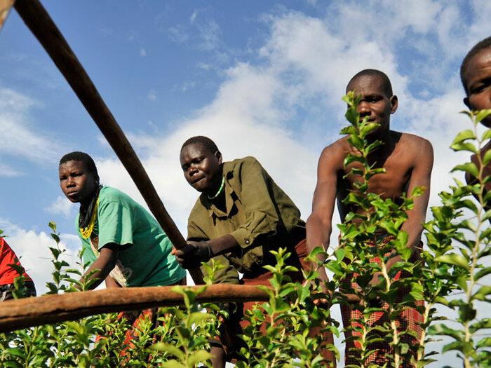 uomini al lavoro nei campi
