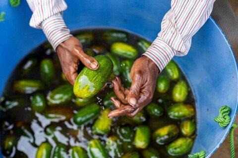 #StopTheWaste: l'importanza di ridare valore al cibo