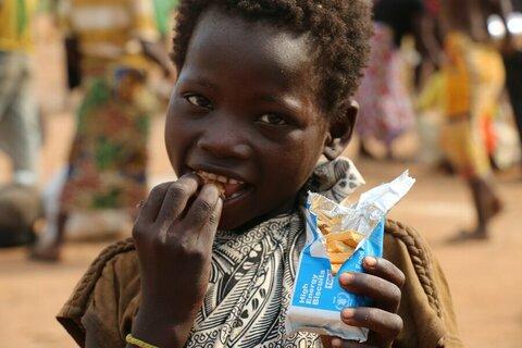 Il WFP: uno sguardo d'insieme