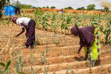 Crisi in Burkina Faso: l'Italia sostiene ulteriormente le attività del WFP di assistenza alimentare e costruzione della resilienza