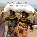 Rapporto annuale (in inglese) - dati del 2011